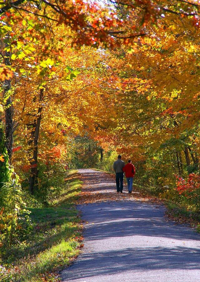 Een wandeling van de Herfst stock fotografie