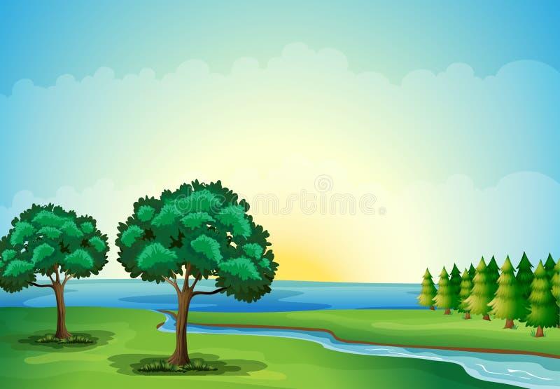 Een waterform in het bos royalty-vrije illustratie