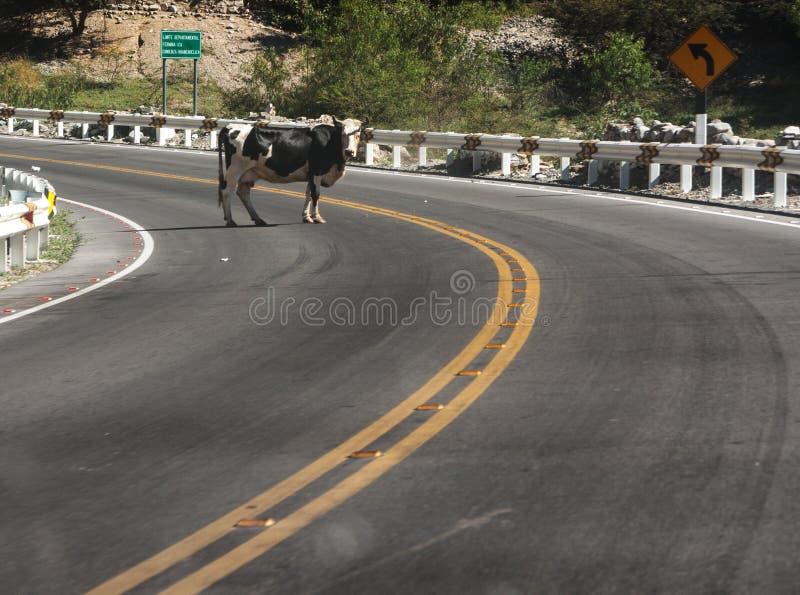 Een weg aan Ayacucho in Peru stock foto