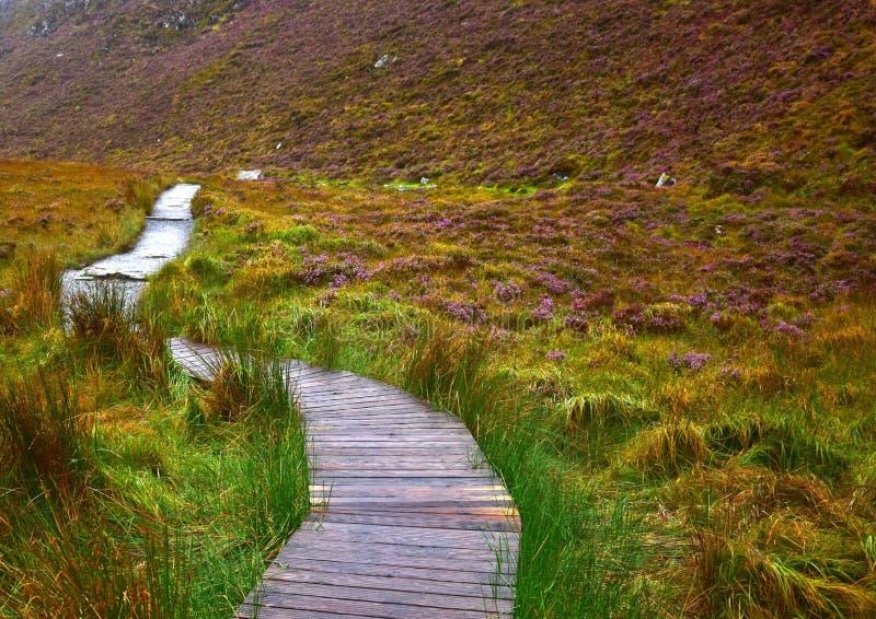 Een weg door het Nationale Park van Connemara in Ierland royalty-vrije stock afbeeldingen