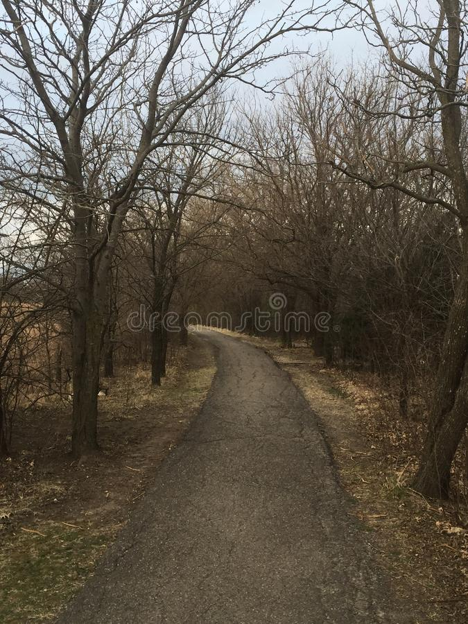 Een weg in het hout door de bomen vindt naar wat u streeft royalty-vrije stock fotografie