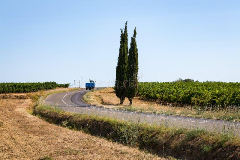 Een weg in het midden van de wijngaarden in het zuiden van Frankrijk royalty-vrije stock foto
