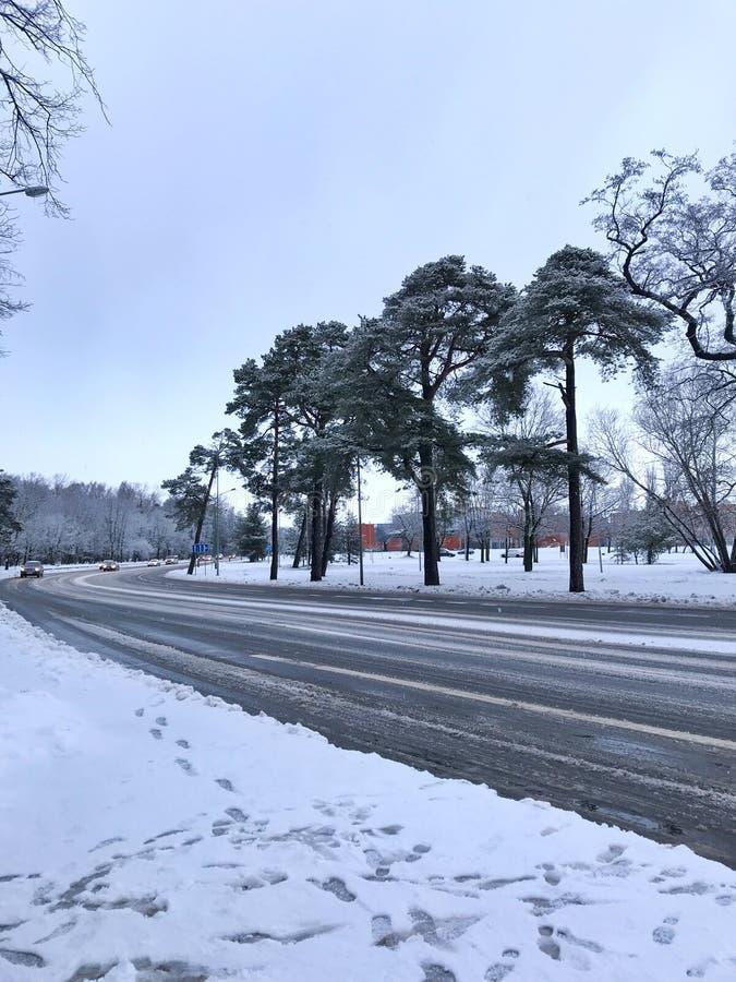 Een weg in Klaipeda, Litouwen stock afbeeldingen