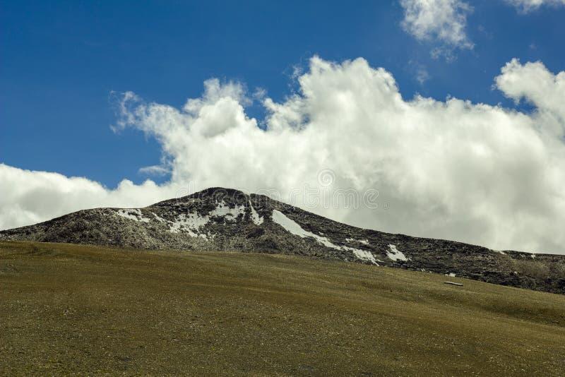 Een weide van droog gras met sneeuwberg stock afbeelding