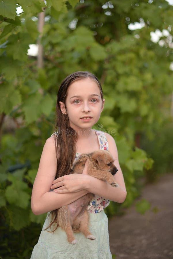Een weinig blond meisje met haar outdooors van de huisdierenhond in park stock afbeeldingen
