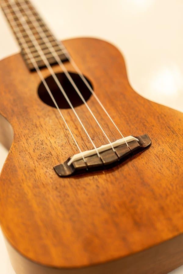 Een weinig Hawaiiaanse gitaar stock fotografie