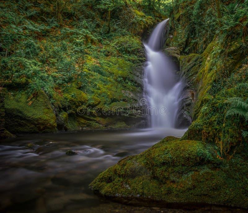 Een Welse Fairytale-Waterval, Abergynolwyn royalty-vrije stock foto