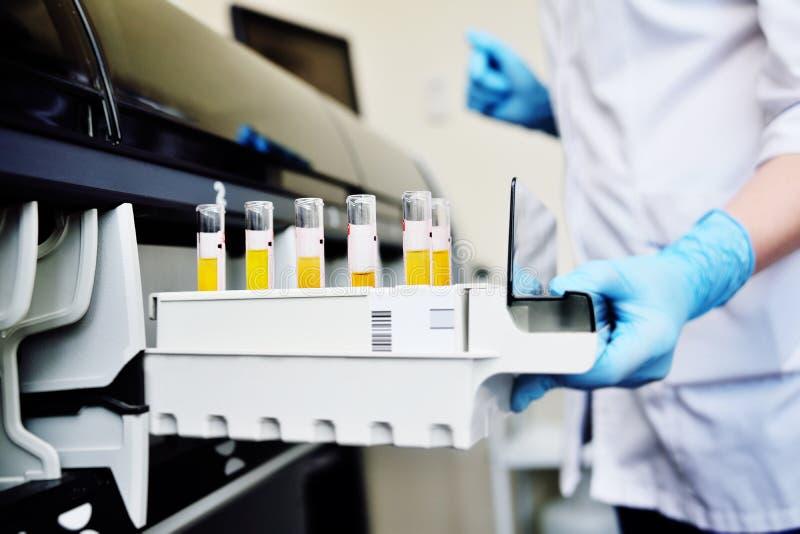 Een wetenschapper in een laboratorium plaatst reageerbuizen met bloed of urine in de container van een thermische analysator stock afbeeldingen
