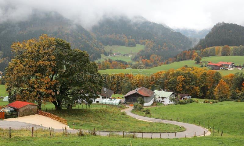 Een windende landwegkrommen tussen groene gebieden en de herfstbomen die tot een boerderij op een mooie helling leiden stock fotografie
