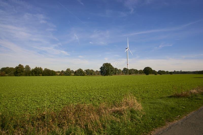 Een windmolen in een landschapsbeeld stock foto