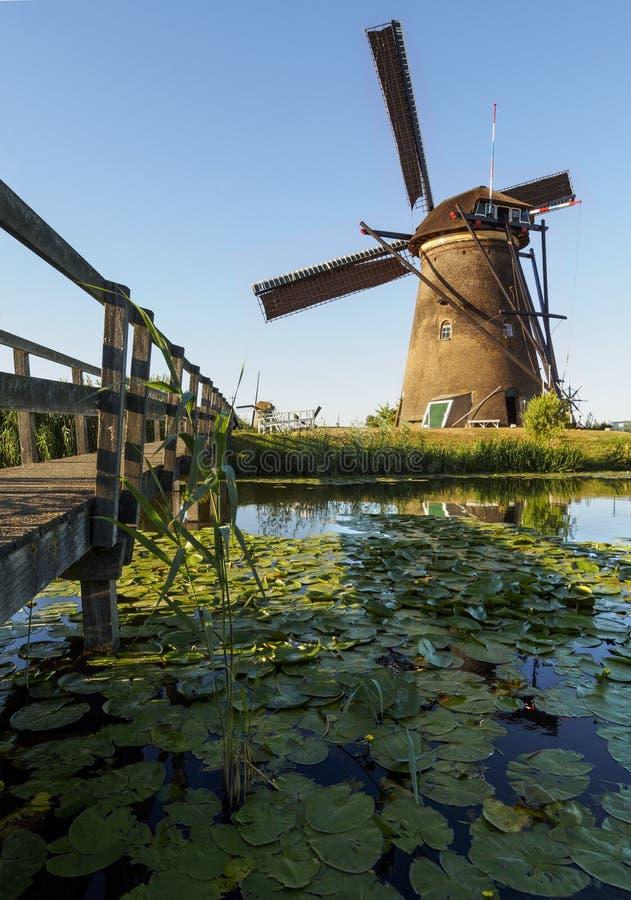 Een windmolen op de bank van een kanaal met riet in Kinderdijk Holland, Nederland stock afbeelding