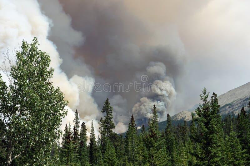 Een woedende bosbrand in de rotsachtige bergen stock afbeeldingen
