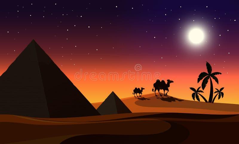 Een woestijn bij nacht royalty-vrije illustratie