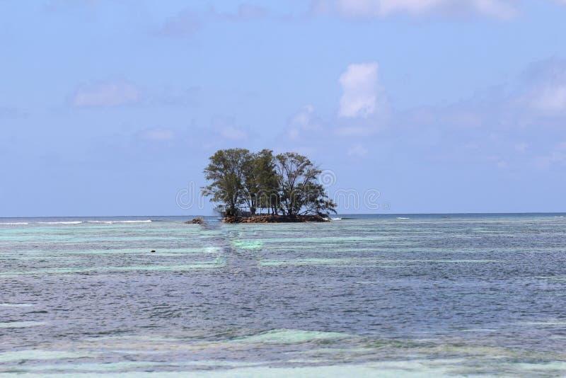 Een woestijneiland in de Indische Oceaan stock foto's