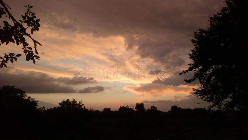 Een zachte zonsondergang met zwarte bomen stock foto
