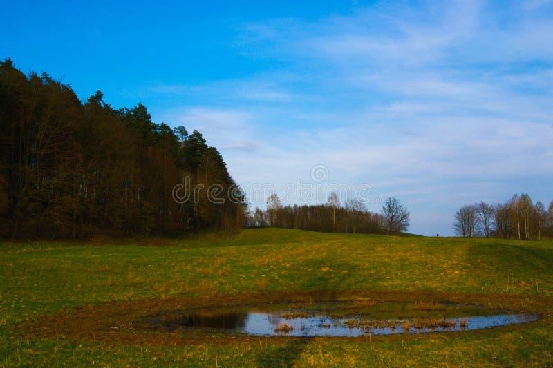 Een zeer aardige mening van aard en hemel tijdens een zonnige dag stock afbeelding