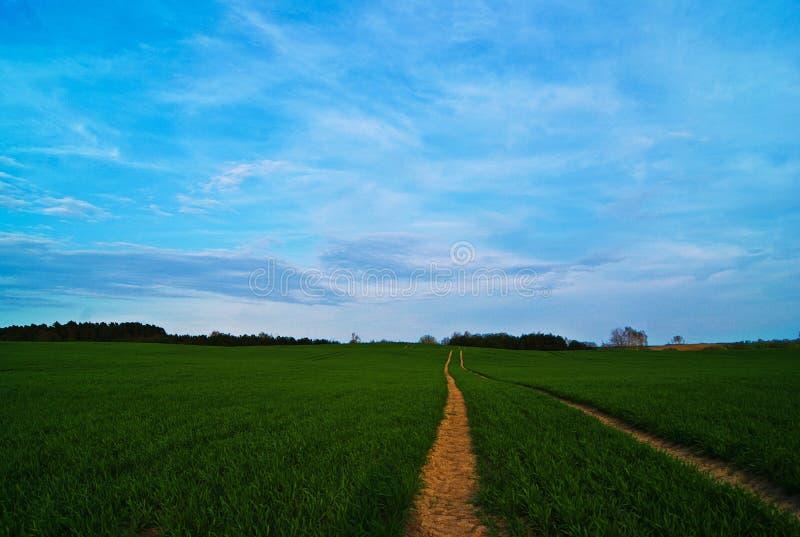 Een zeer aardige mening van aard en hemel tijdens een zonnige dag stock foto