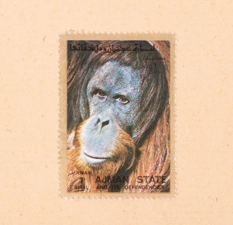 Een zegel in de V.A.E wordt gedrukt toont een orangoetan, circa 1980 die stock foto's