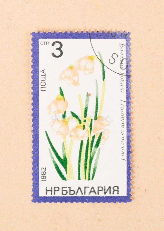 Een zegel die in Rusland wordt gedrukt toont een bloem, circa 1982 stock foto
