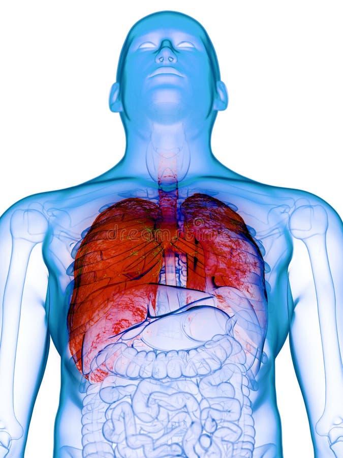 Een zieke long vector illustratie