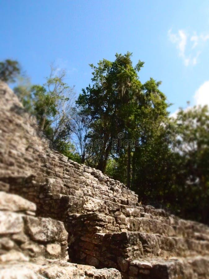 Een zijaanzicht van de stappen van de Ixmoja-piramide bij Mayan Coba-Ruïnes in Cancun royalty-vrije stock foto's