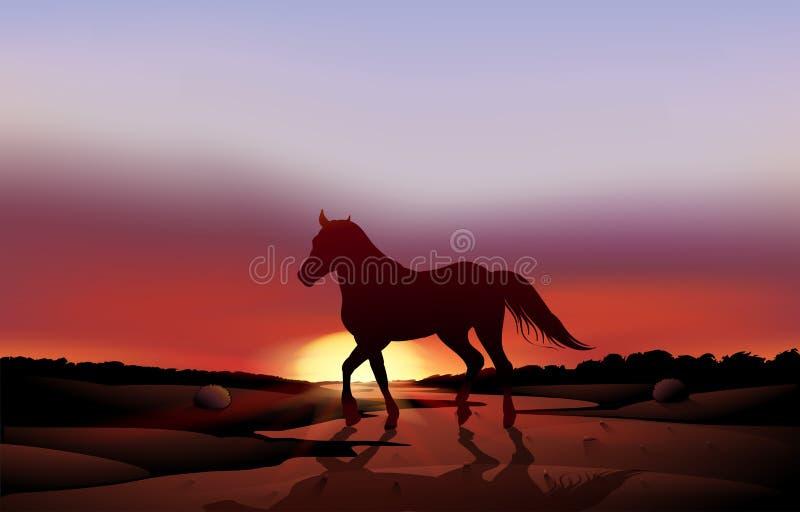 Een zonsondergang bij de woestijn met een paard stock illustratie