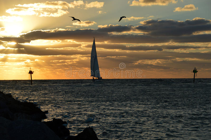 Een zonsondergangzeil royalty-vrije stock foto