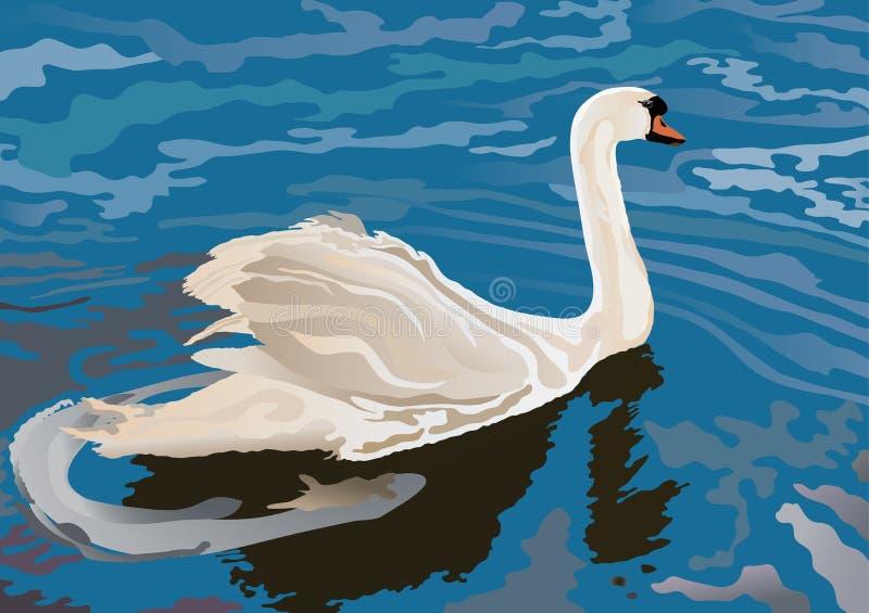 Een zwaan op het meer stock illustratie