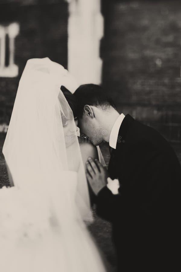 Een zwart-wit beeld van een bruidegom het kussen bruid` s schouder stock foto's