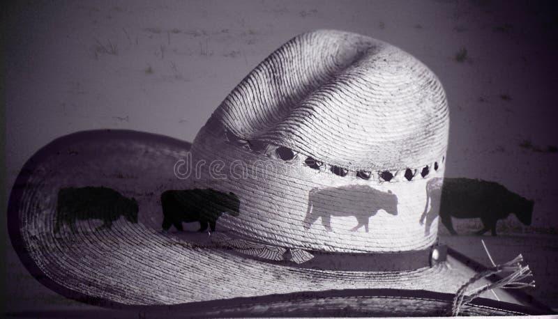Een zwart-witte cowboyhoed met gemengde foto van koeien die samenvatting lopen royalty-vrije stock foto
