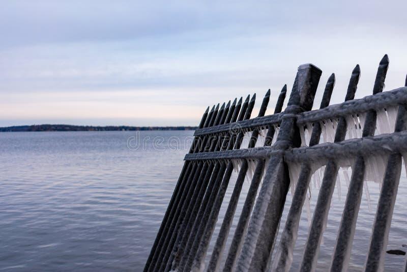 Een Zwarte Omheining Covered in Ijs op de Kust van Meer Mendota in Madison Wisconsin stock fotografie