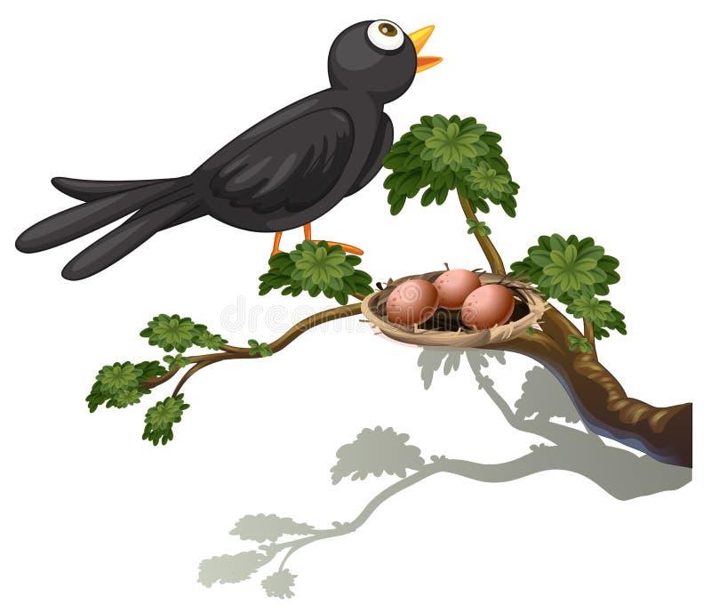 Een zwarte vogel bij de tak van een boom met een nest stock illustratie