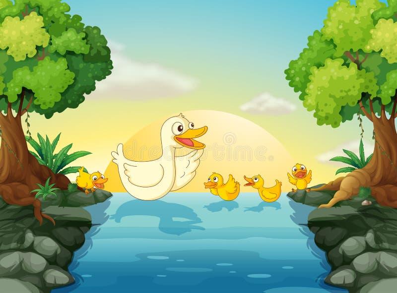 Eenden bij de rivier stock illustratie