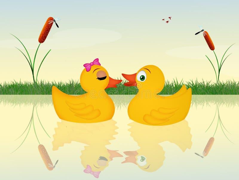 Eenden in het water royalty-vrije illustratie
