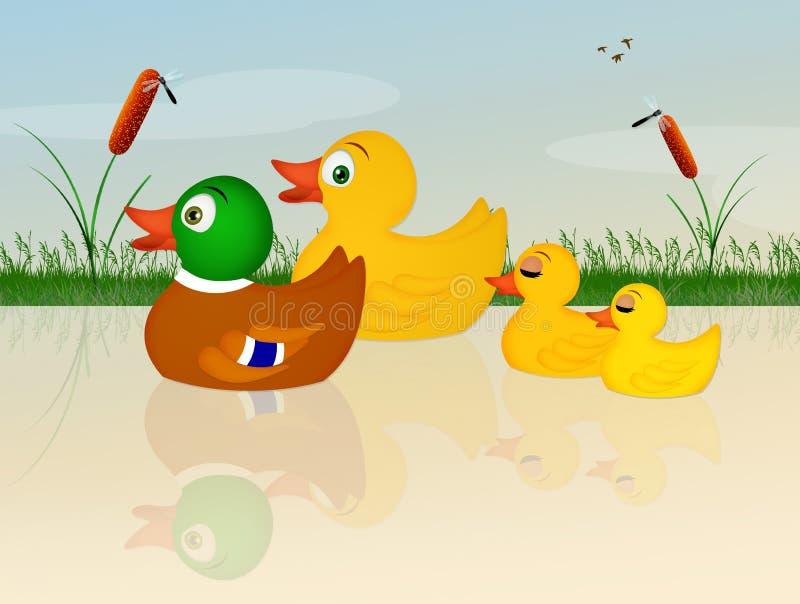 Eendenfamilie in het water vector illustratie