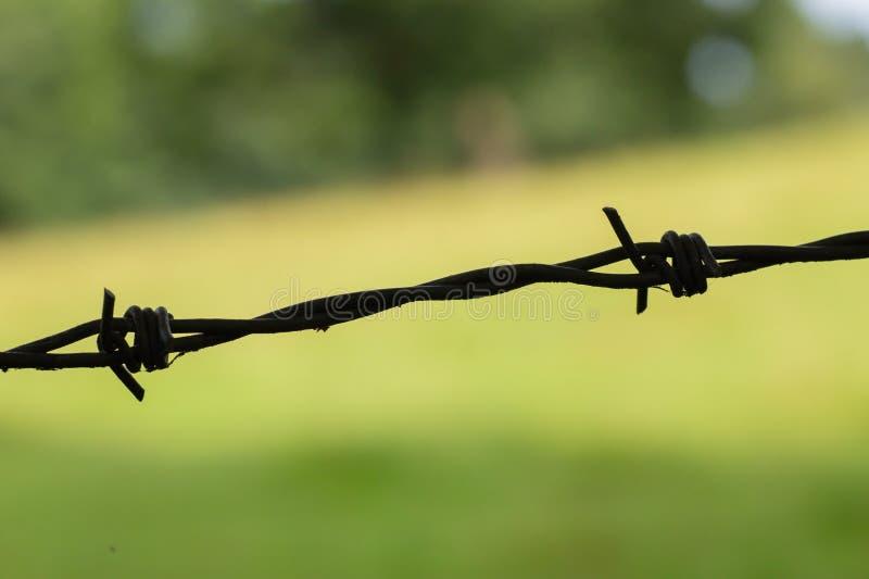 Eenvoudig maar efficiënt prikkeldraad - stock foto's