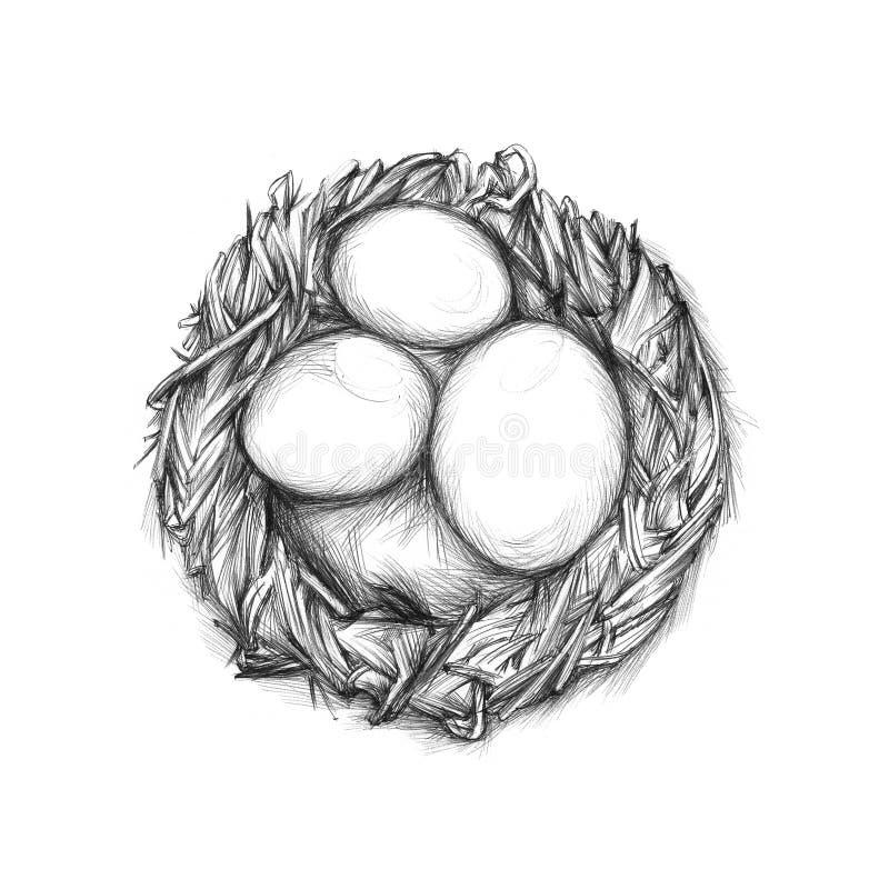 Eenvoudig nest met eieren royalty-vrije illustratie