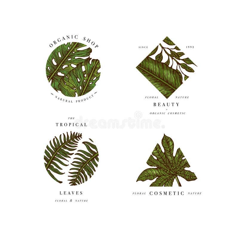 Eenvoudige embleeminzameling Gegraveerd logotype plaats De tropische symbolen van de schoonheidssalon Vector illustratie stock illustratie