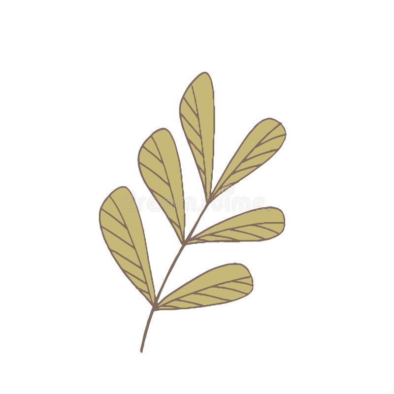Eenvoudige ongebruikelijke bloemen royalty-vrije stock afbeeldingen