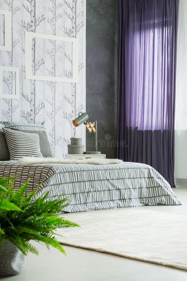 Eenvoudige slaapkamer met varen royalty-vrije stock foto