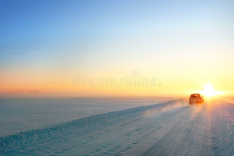 Eenvoudige sneeuwsporen - portret stock foto's
