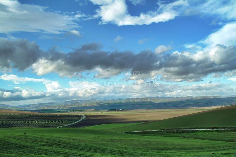 Eenzaam Art Nature Hills onder bewolkte hemel stock foto