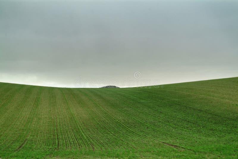 Eenzaam Art Nature Hills onder bewolkte hemel stock foto's