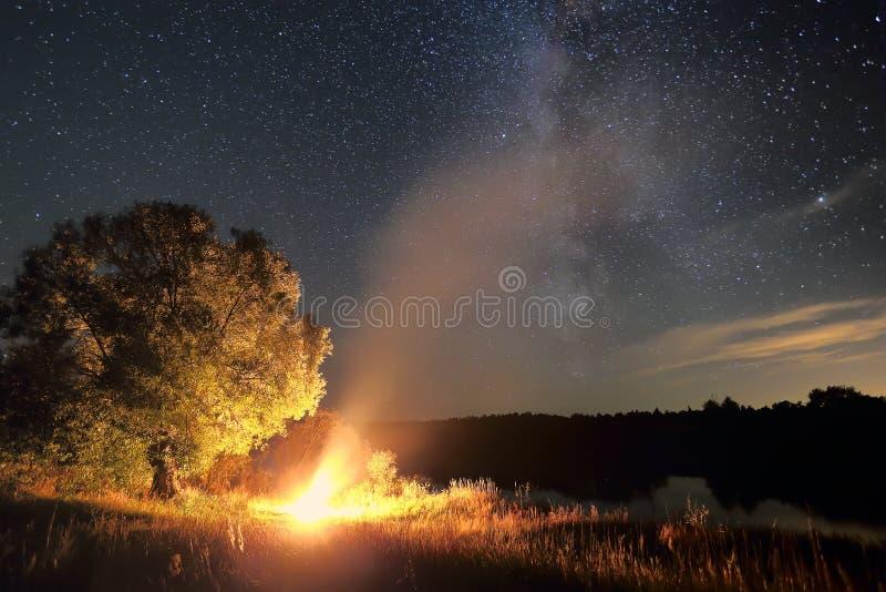 Eenzaam boom en vuur bij nacht royalty-vrije stock foto