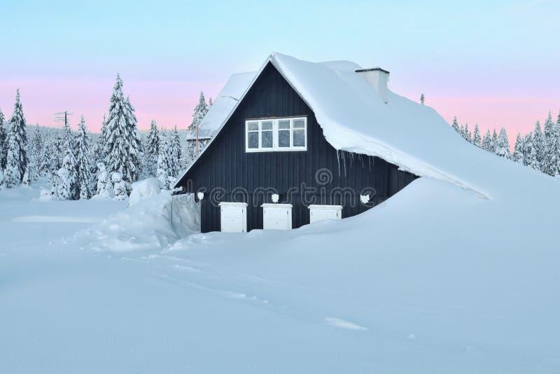 Eenzaam houtplattelandshuisje in de winter royalty-vrije stock foto's
