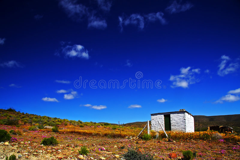 Eenzaam Huis Tankwa royalty-vrije stock fotografie