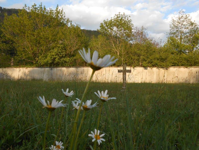 Eenzaam kruis op begraafplaats stock afbeeldingen