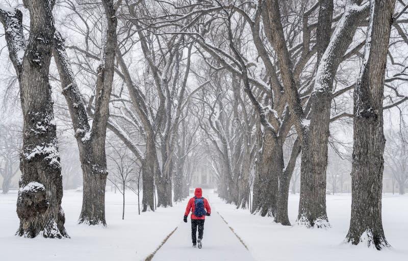 Eenzaam mannelijk figuur in een blizzard royalty-vrije stock afbeelding