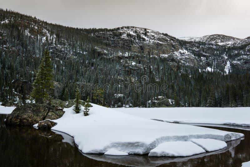 Eenzaam Pijnboommeer, Rocky Mountain National Park stock fotografie