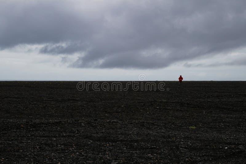 Eenzaam in steenwoestijn stock foto's